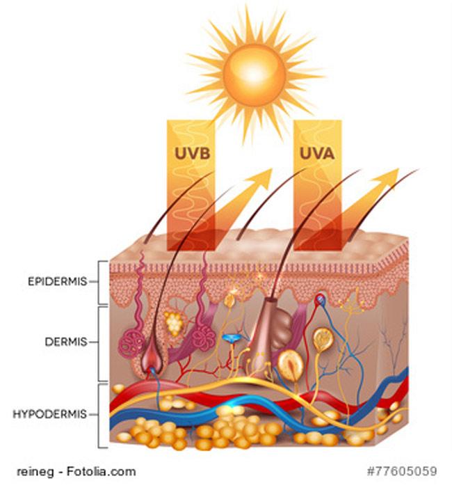 UV Strahlung